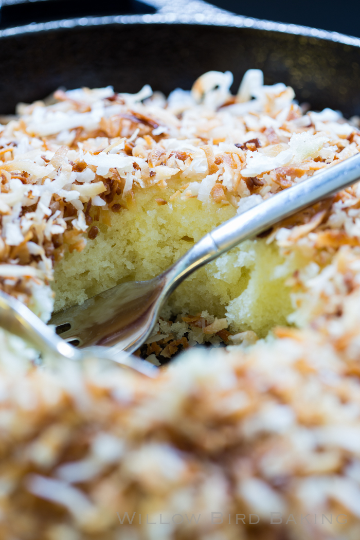 Hot Toasted Coconut Cake Willow Bird Baking