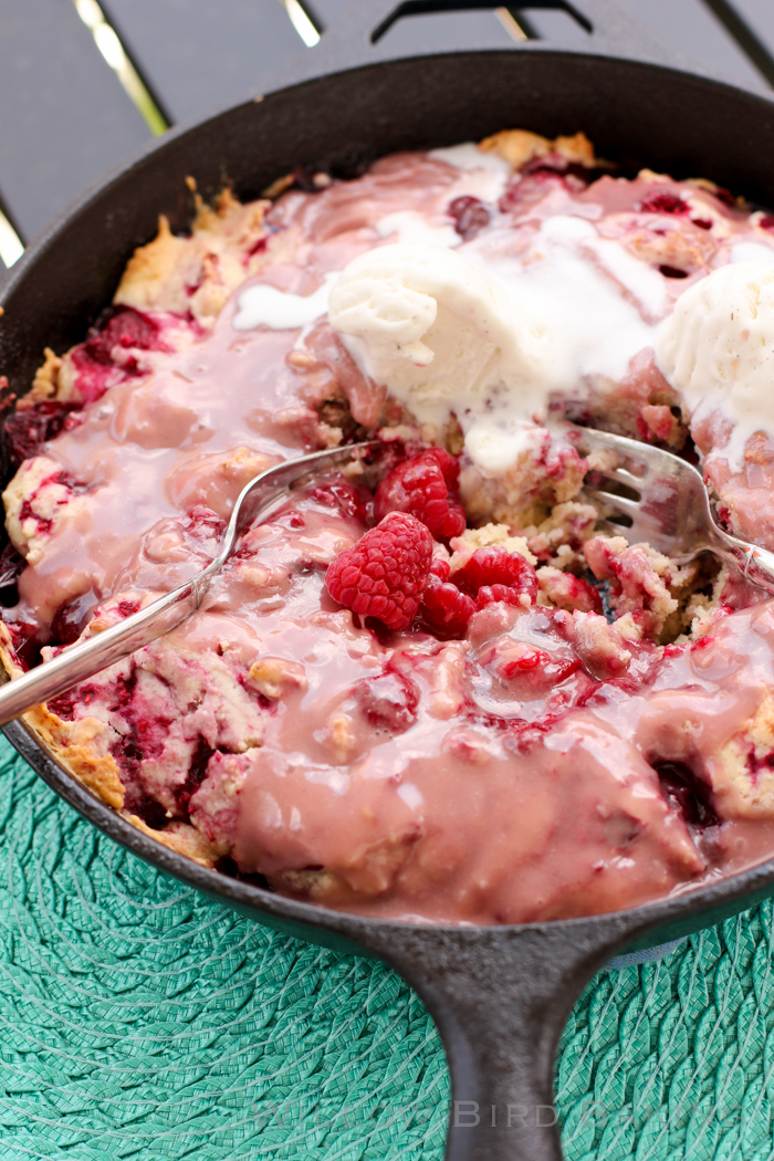 Hot Raspberry Cake with Vanilla Ice Cream