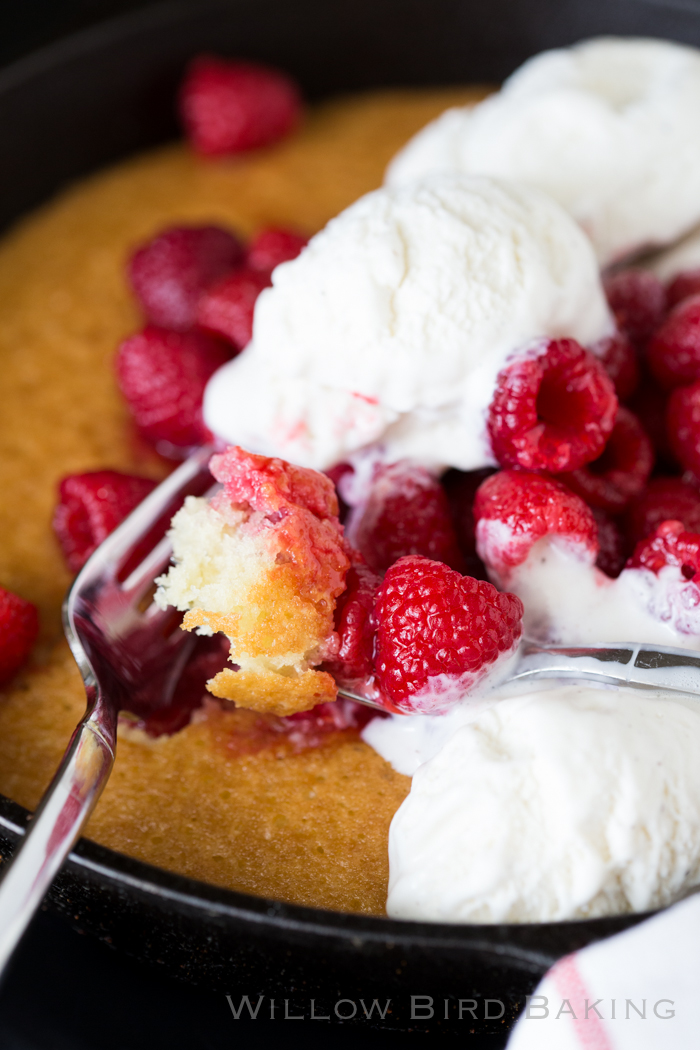 Hot Raspberry Cake and Ice Cream